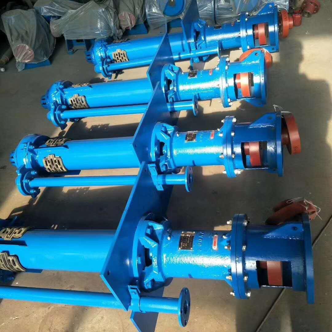 立式渣浆泵 (5)